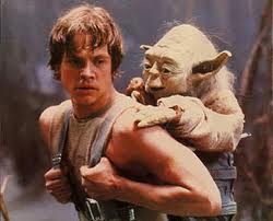Yoda's Tips on Urban Survival