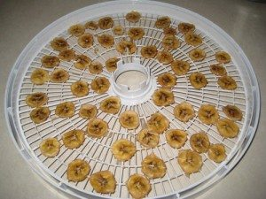 Dehydrating Bananas