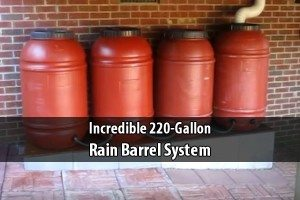 Incredible 220 Gallon Rain Barrel System