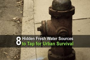 8 Hidden Fresh Water Sources To Tap for Urban Survival