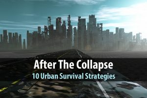 After the Collapse: 10 Urban Survival Strategies