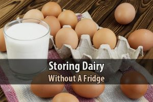 Storing Dairy Without a Fridge