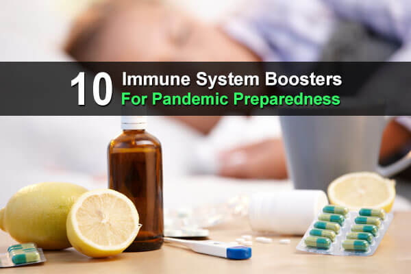 10 Immune System Boosters for Pandemic Preparedness
