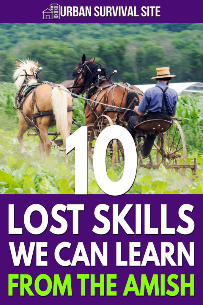 10 Lost Skills We Can Learn From The Amish