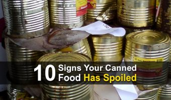 10 Signs Your Canned Food Has Spoiled