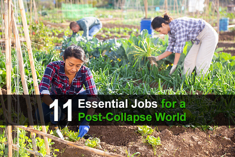 11 Essential Jobs for a Post-Collapse World