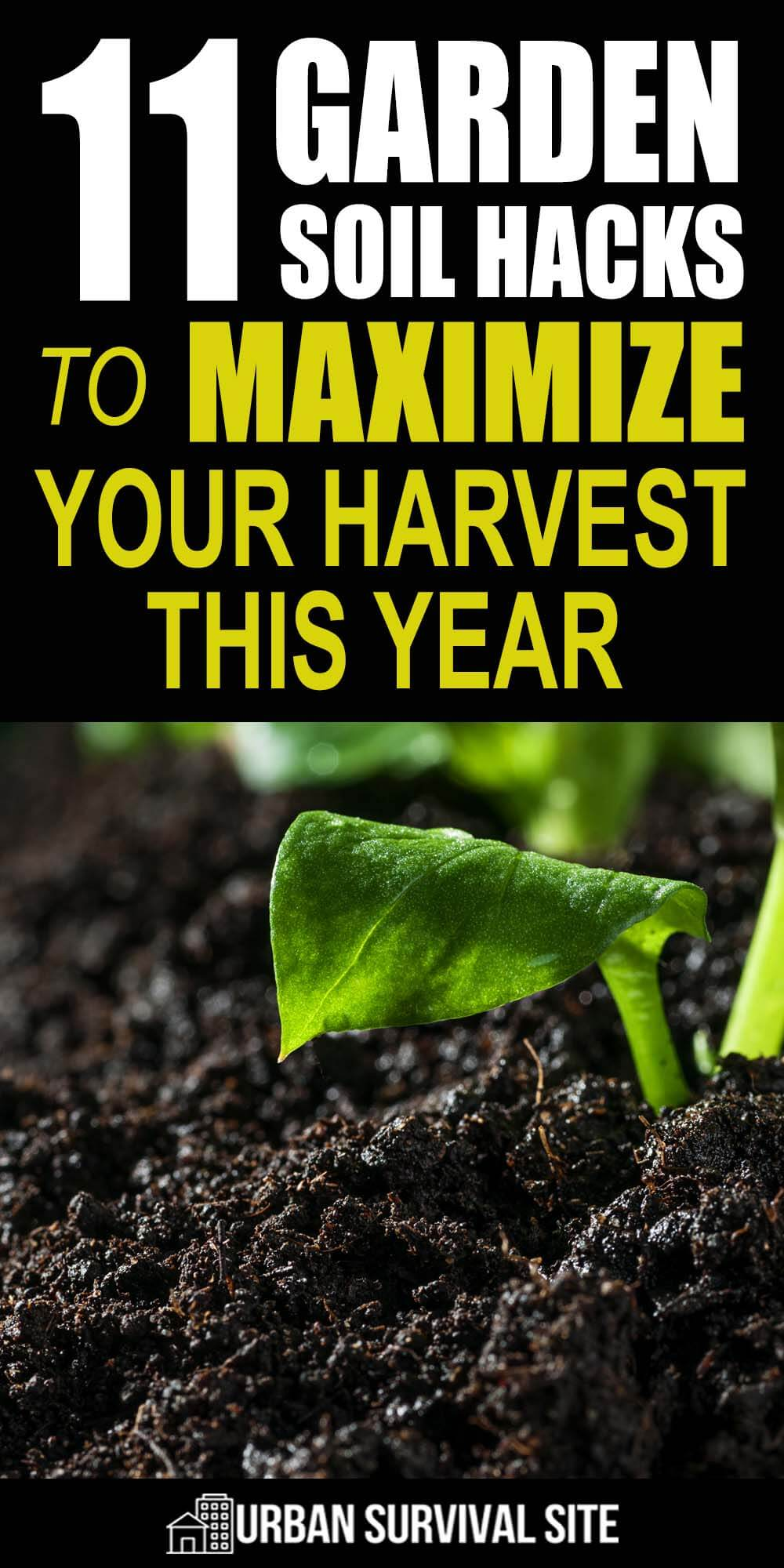 11 Garden Soil Hacks To Maximize Your Harvest This Year