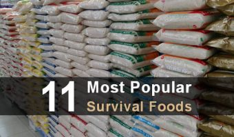 11 Most Popular Survival Foods