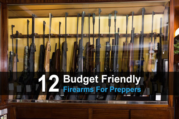 12 Budget-Friendly Firearms For Preppers