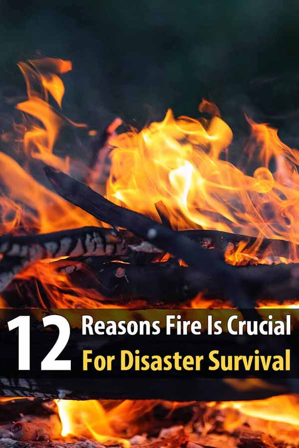12 Reasons Fire Is Crucial For Disaster Survival