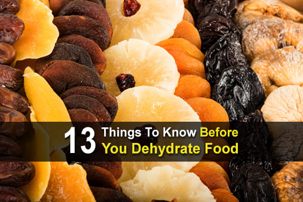 13 Things To Know Before You Dehydrate Food
