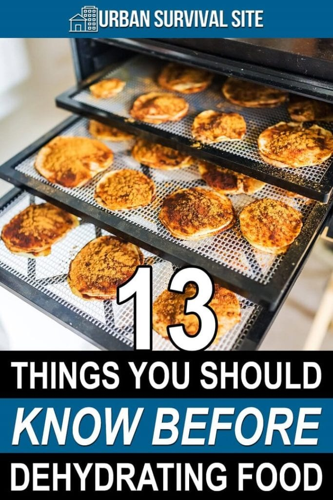 13 Things You Should Know Before Dehydrating Food