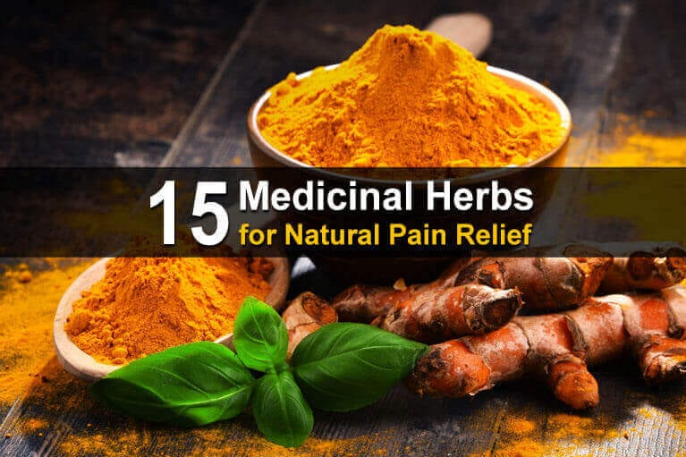 15 Medicinal Herbs for Natural Pain Relief