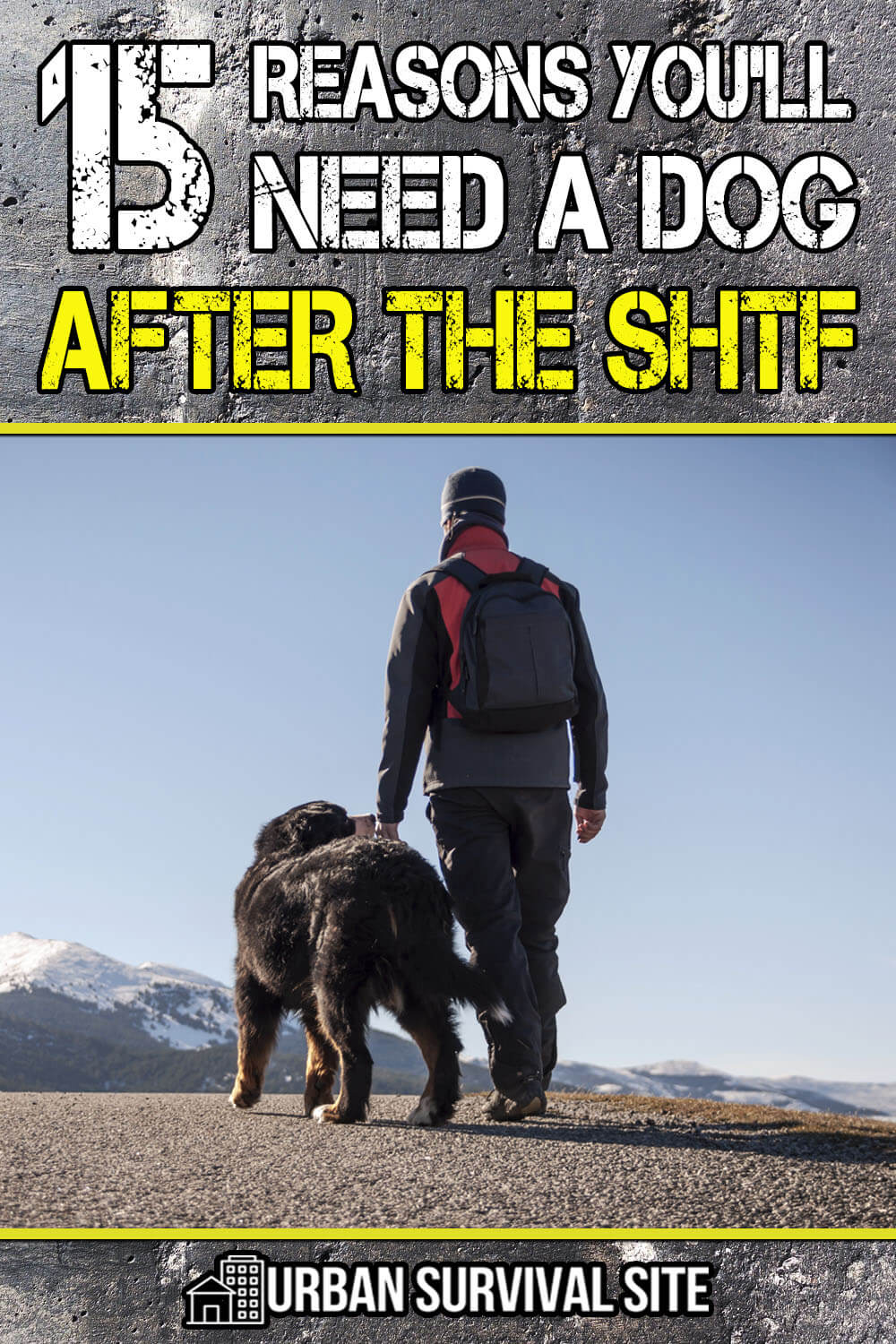 15 Reasons You'll Need A Dog After The SHTF