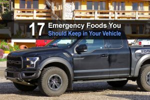 17 Emergency Foods You Should Keep in Your Vehicle