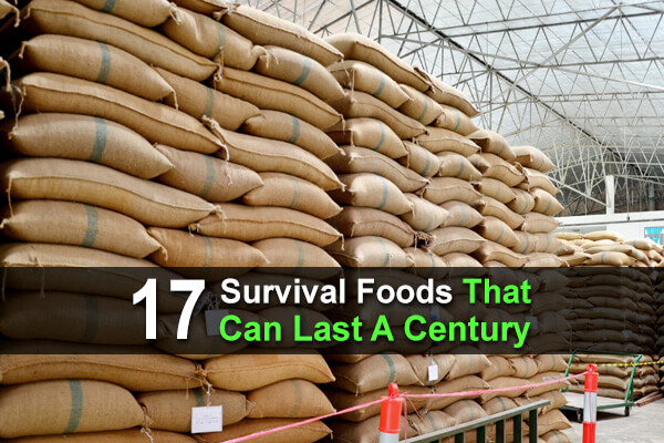 17 Survival Foods That Can Last A Century