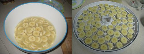 Dehydrating Bananas 2