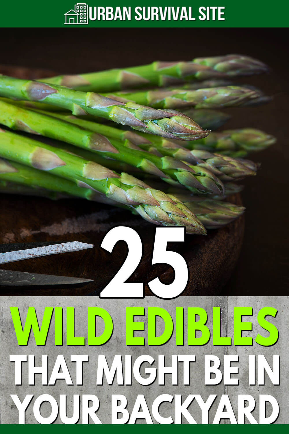 25 Wild Edibles That Might Be In Your Backyard