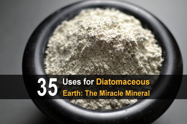35 Uses for Diatomaceous Earth