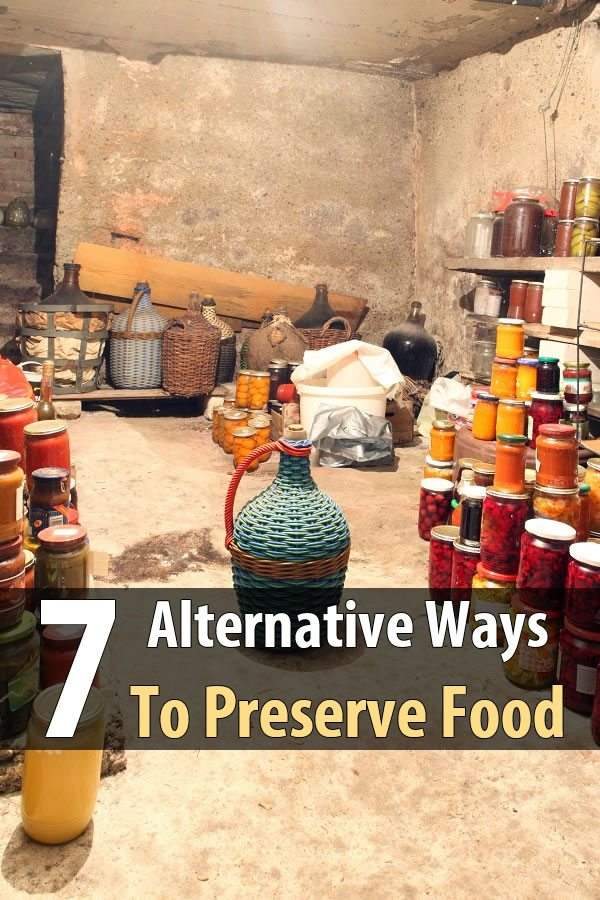 7 Alternative Ways To Preserve Food