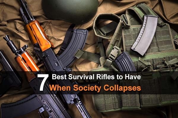 7 Best Survival Rifles To Have When Society Collapses