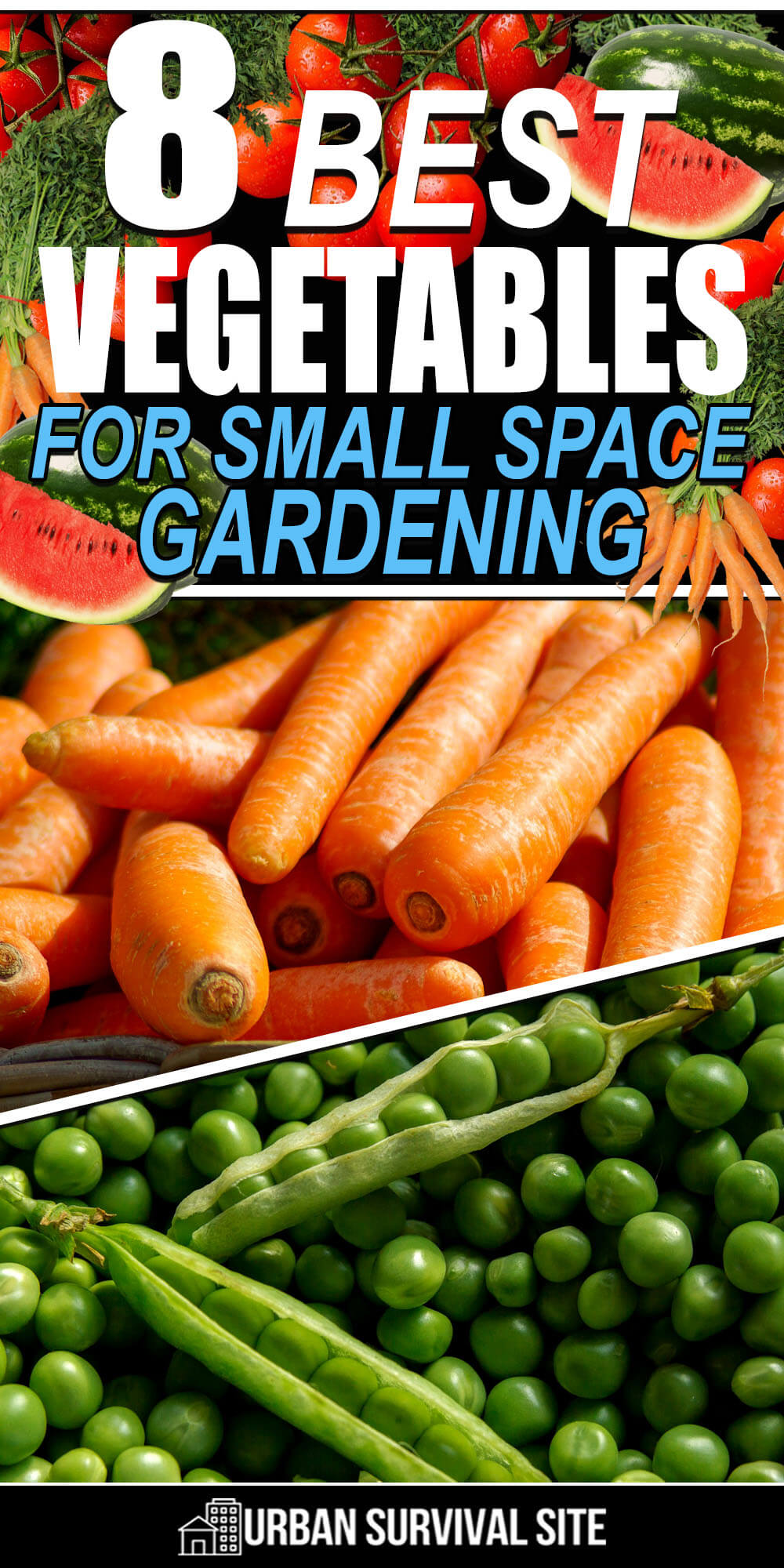 8 Best Vegetables for Small Space Gardening