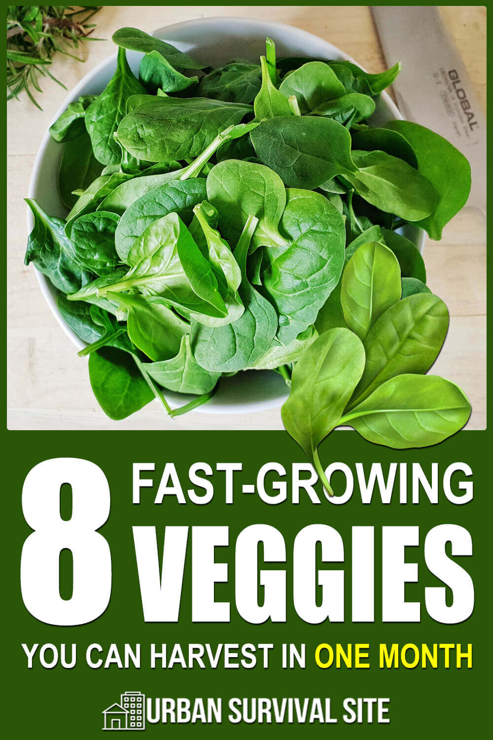 8 Fast-Growing Veggies You Can Harvest In One Month