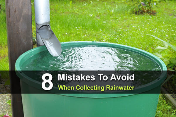 8 Mistakes To Avoid When Collecting Rainwater