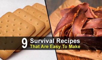 9 Survival Recipes That Are Easy To Make