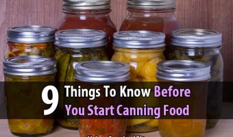 9 Things To Know Before You Start Canning Food