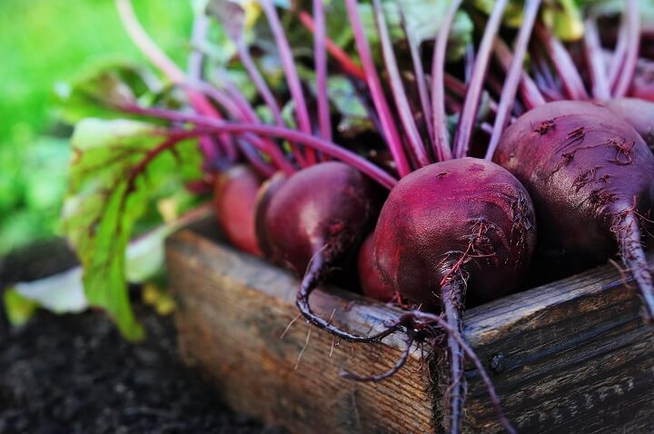 Beets in Crate