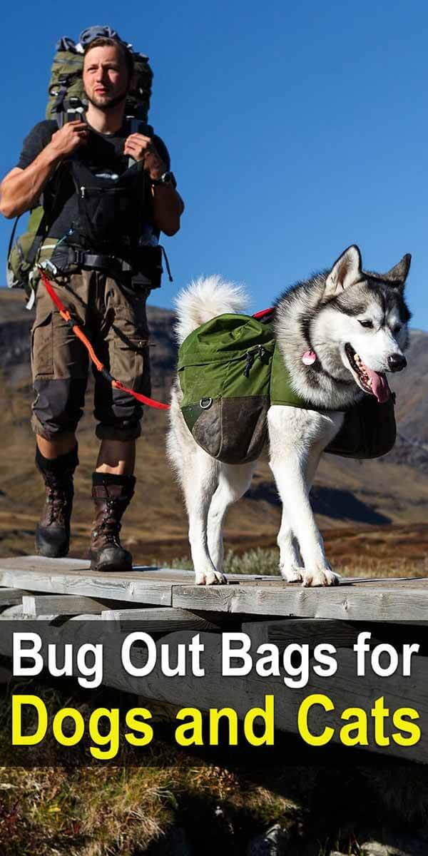 Bug Out Bags for Dogs & Cats