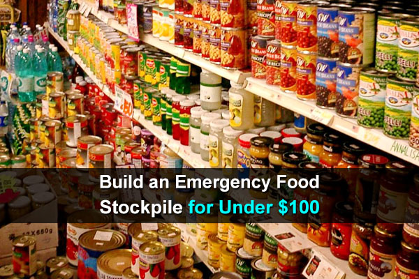 Build an Emergency Food Stockpile for Under $100