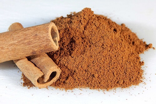 Cinnamon | Herbal Alternatives to Antibiotics