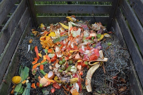 Compost Bin with Fruit Peels