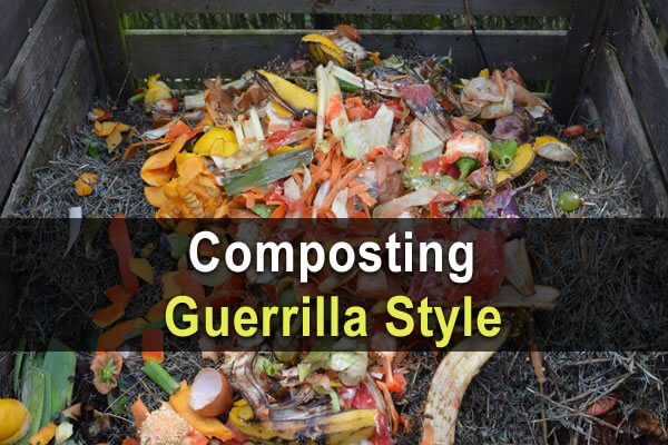 Composting Guerrilla Style