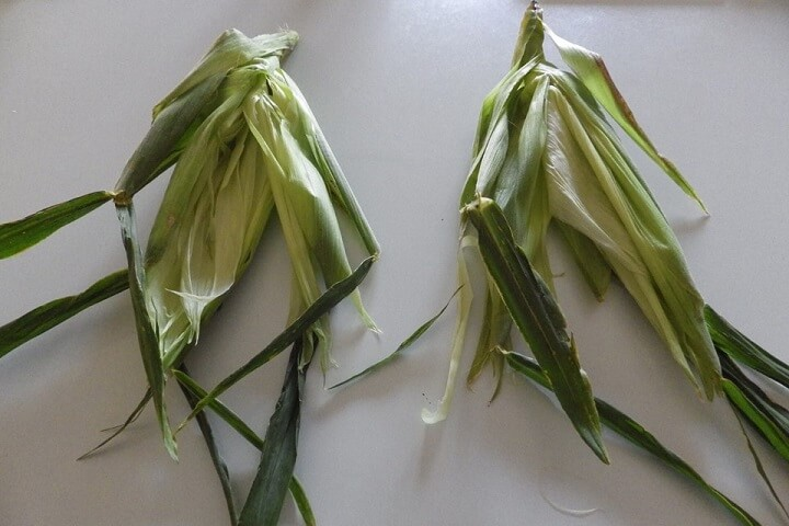 Corn Husks Prepped