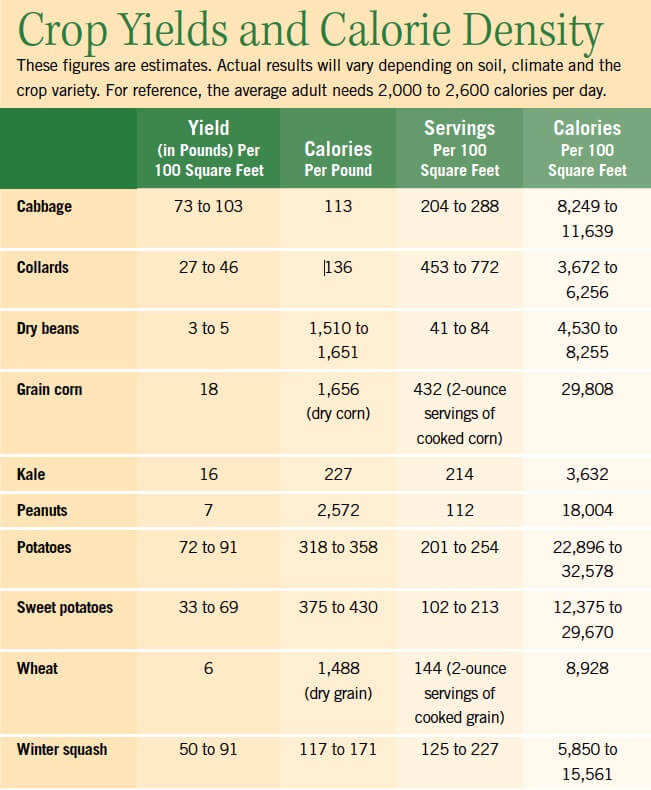 Crop Yields and Calorie Density
