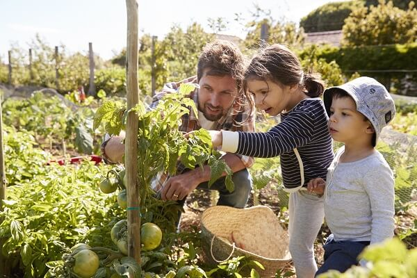 Father and Children Gardening