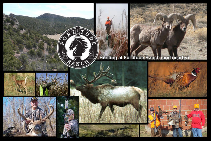 Fortitude Ranch Collage 1