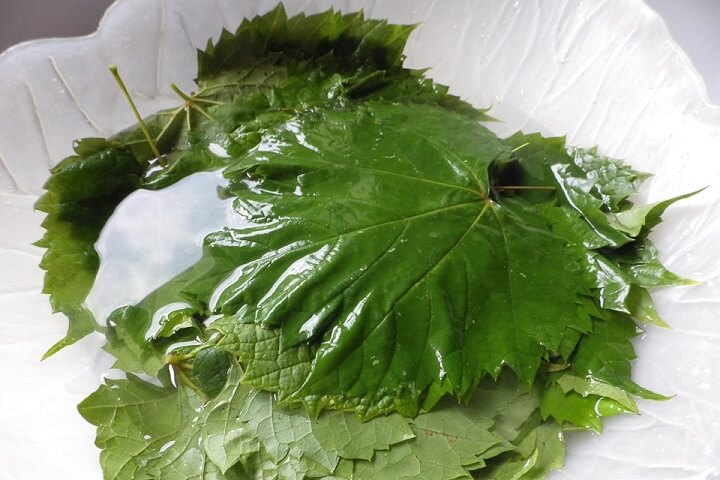 Grape Leaf Prep