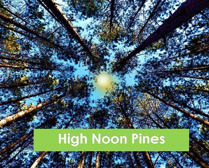 High Noon Pines