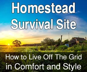 Homestead Survival Site
