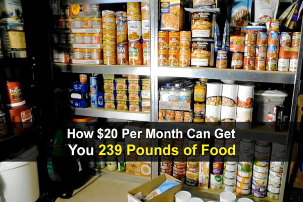 How $20 Per Month Can Get You 239 Pounds of Food