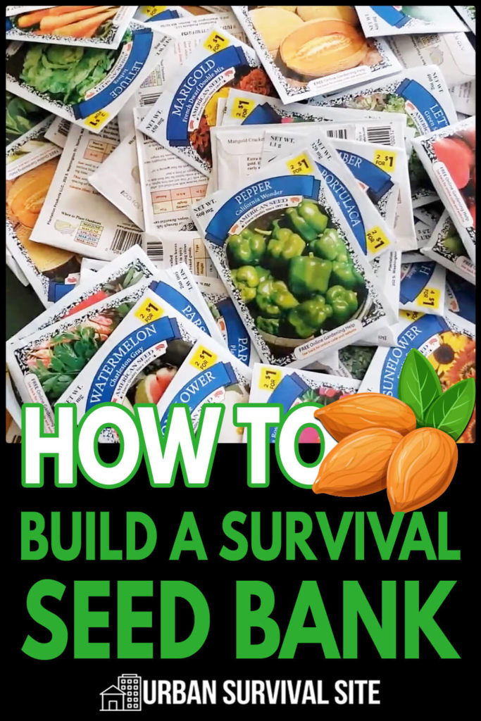 How to Build a Survival Seed Bank