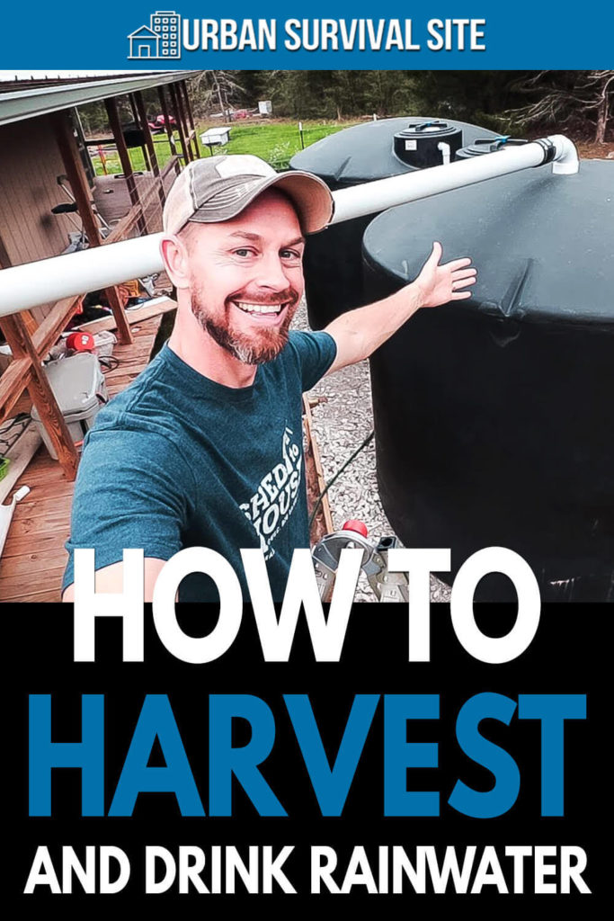 How To Harvest And Drink Rainwater