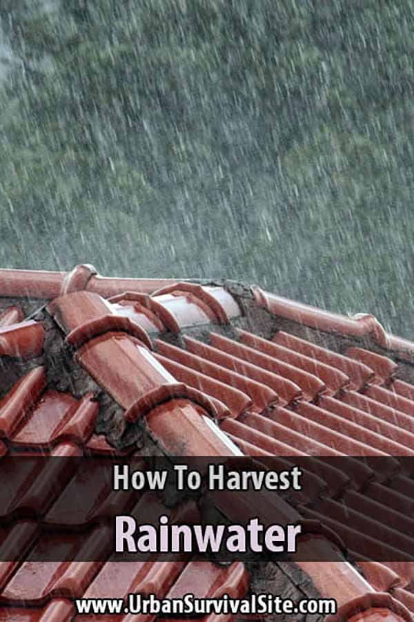 How to Harvest Rainwater