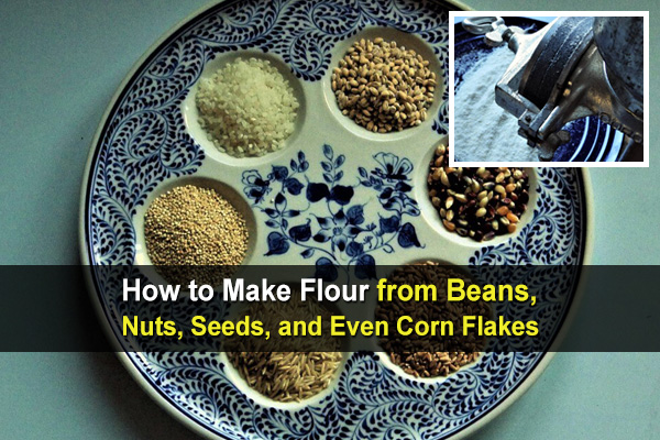 How to Make Flour from Beans, Nuts, Seeds and Even Corn Flakes