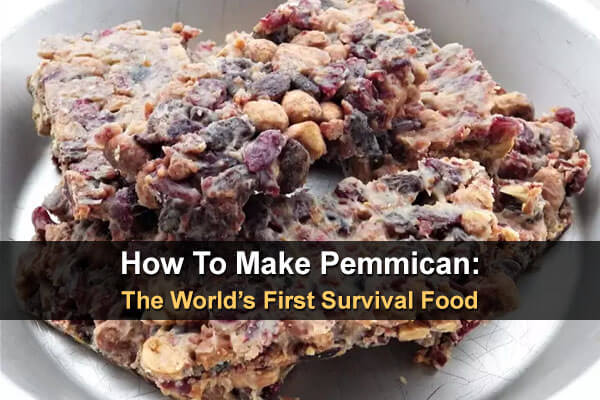 How To Make Pemmican: The World's First Survival Food