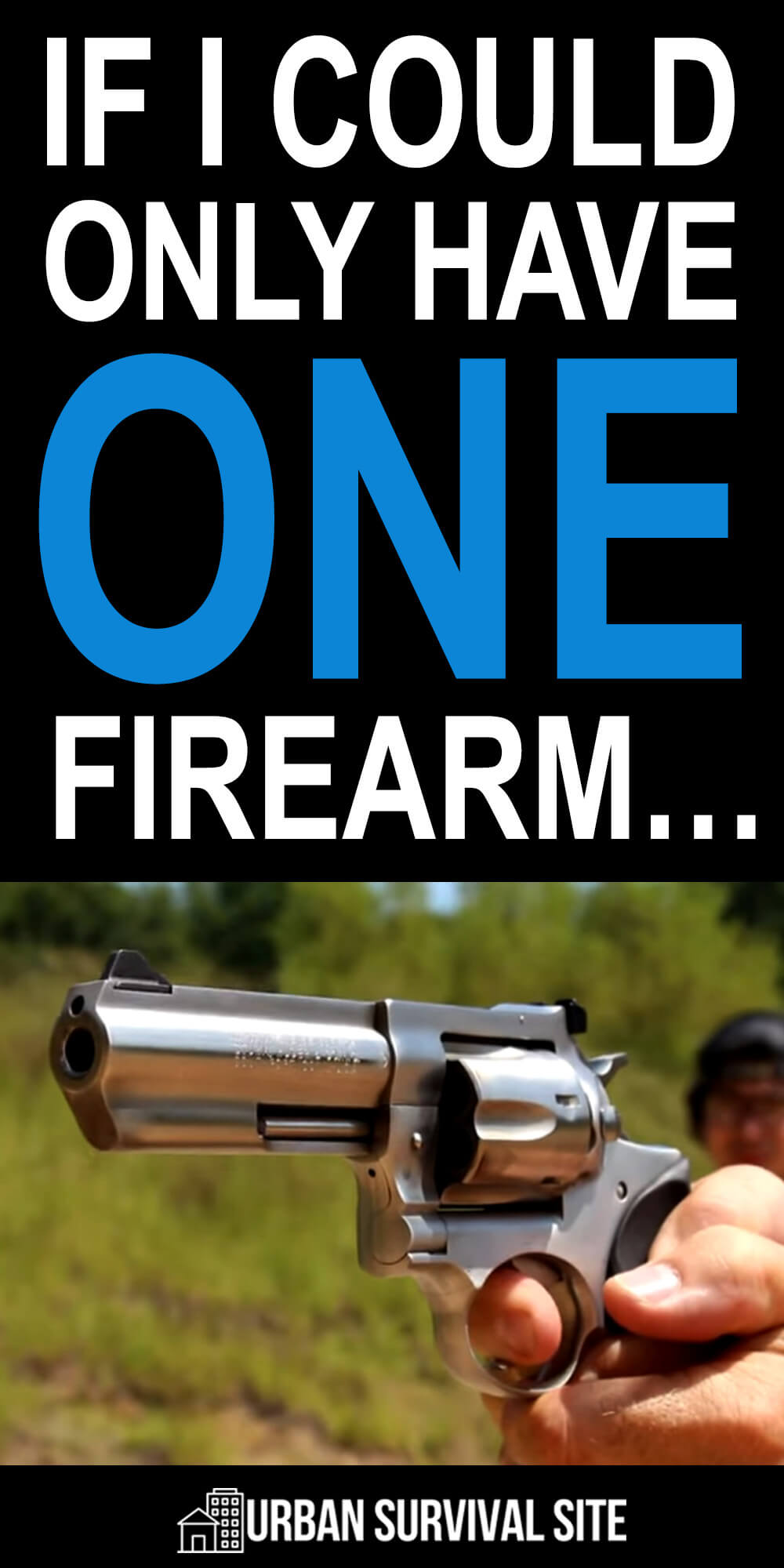 If I Could Only Have One Firearm...